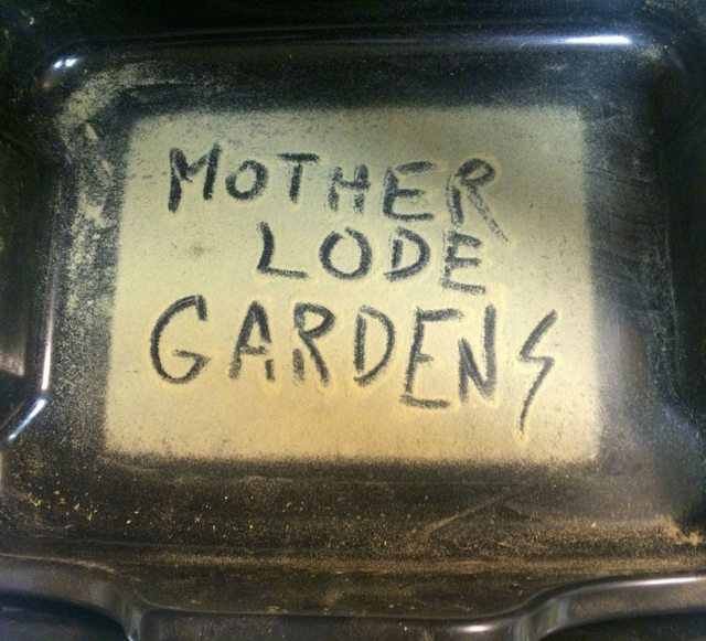 Mother Lode Gardens Sign